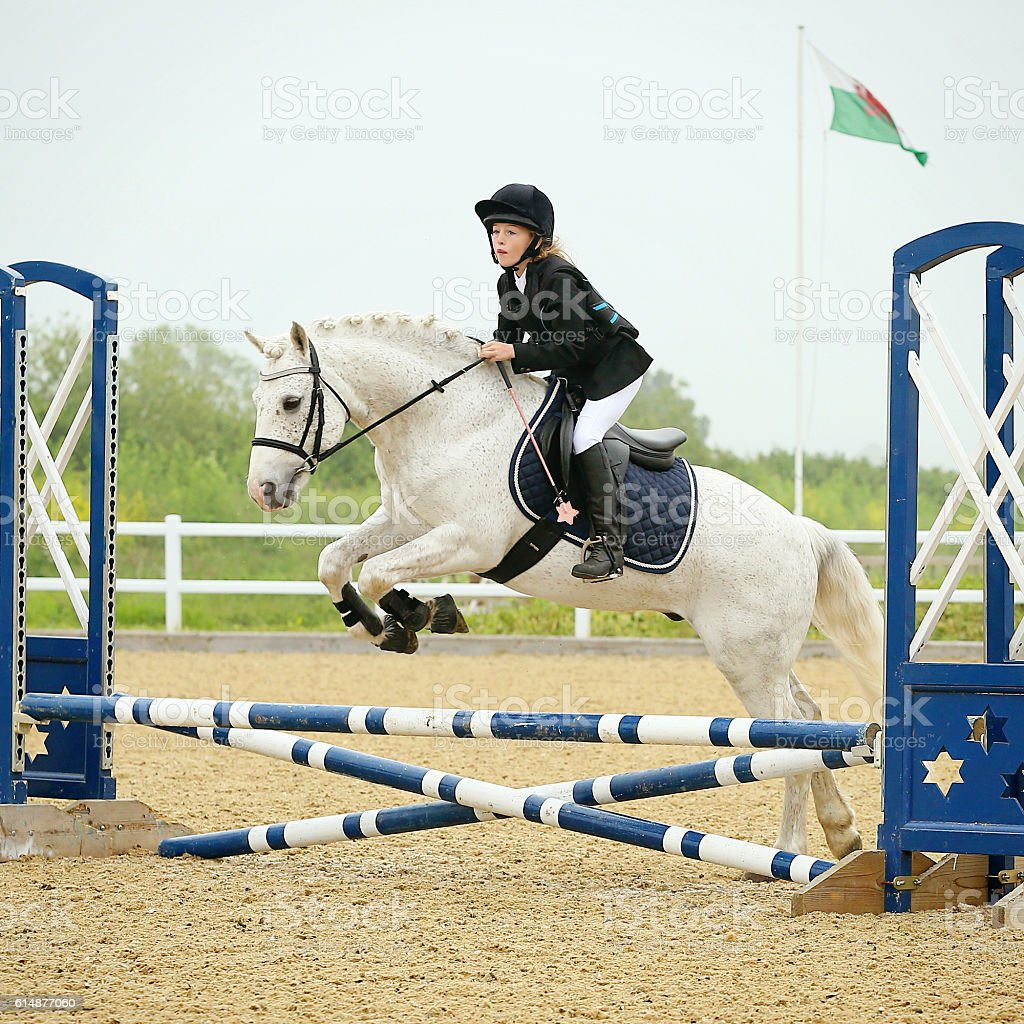Young Girl Show Jumping on Her Pony stock photo