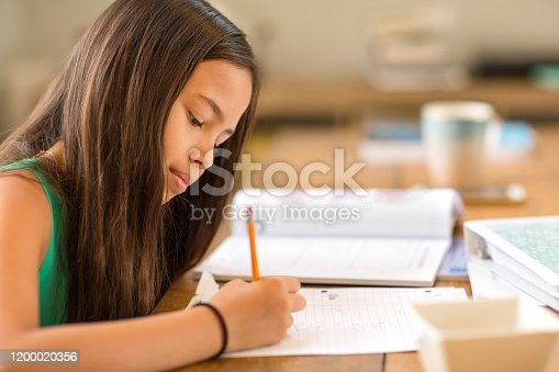Asian Girl Working On Her Homework At Home