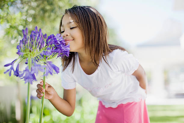 Young girl smelling flower  western cape province stock pictures, royalty-free photos & images
