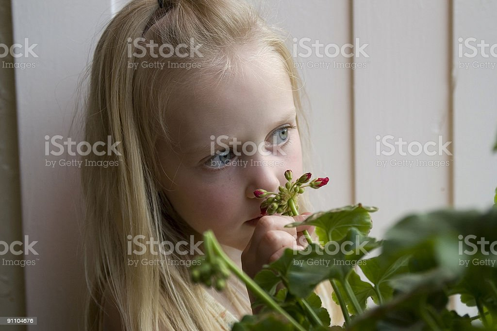 Young girl smelling flowers stock photo