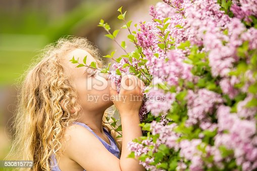 Close-up side view of a young girl smelling lilac blossoms on a lilac bush in full bloom. The girl has curly blonde hair and is using her hand to get the flowers closer to her face.