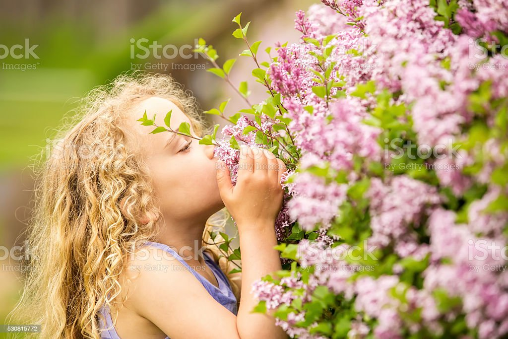 Young Girl Smelling Lilac Blossoms in Springtime stock photo