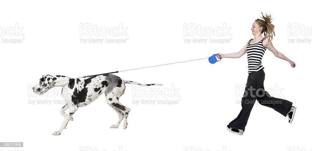 Young girl walking her dog (Great dane 4 years) stock photo