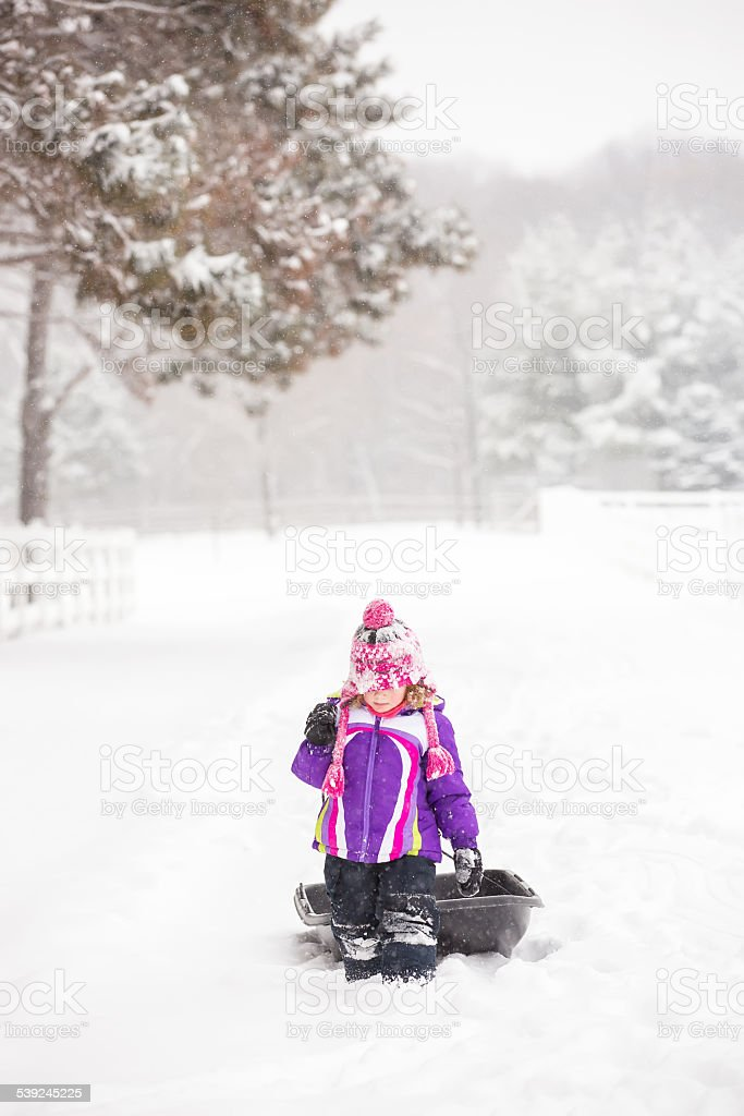 Young Girl Walking in Winter Snow Storm Pulling Sled royalty-free stock photo