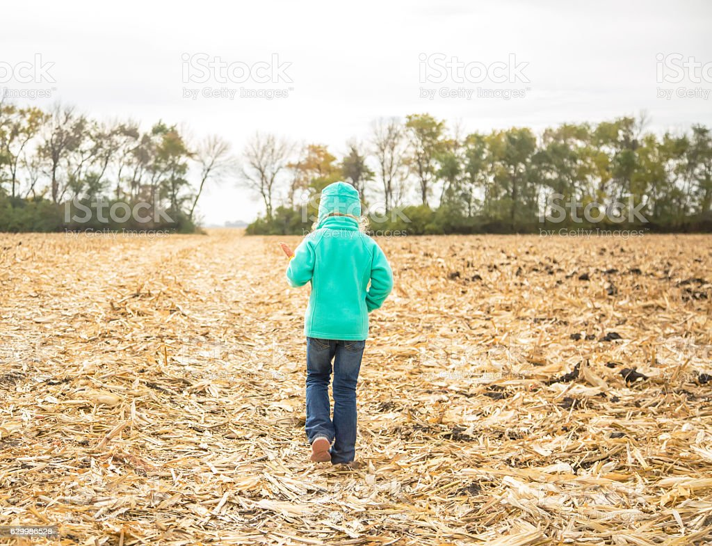 Young Girl Walking Through Chiseled Corn Field stock photo