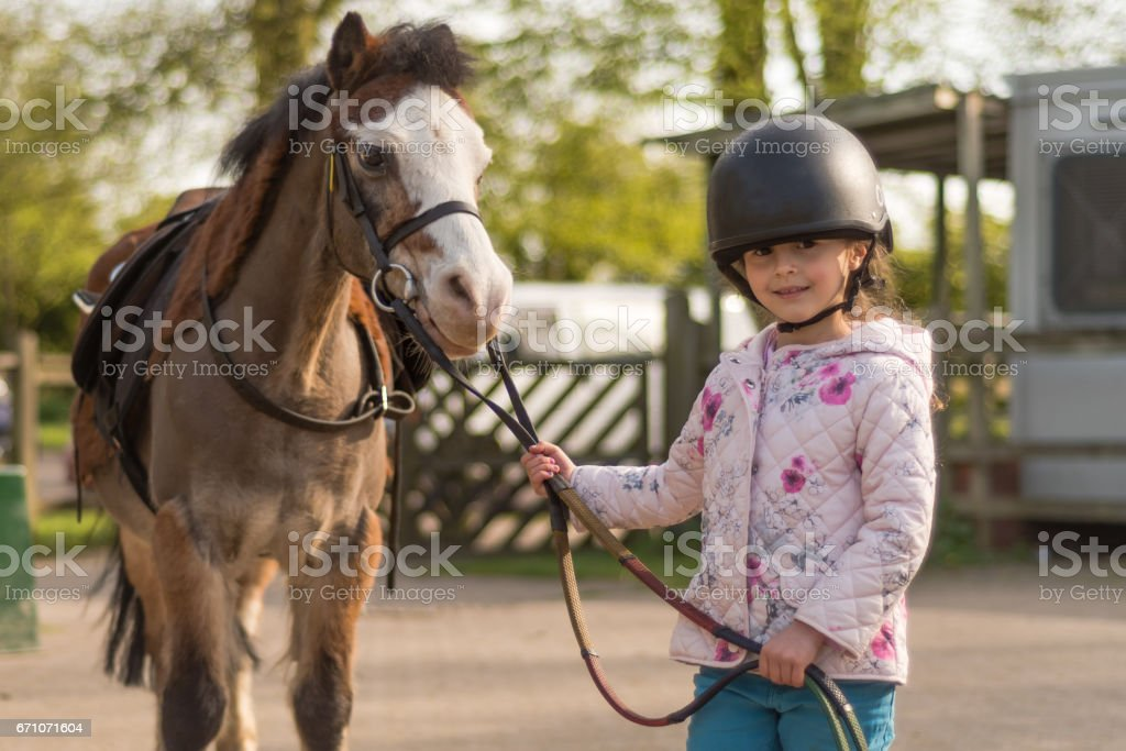 Young girl wearing riding helmet leading Welsh pony stock photo