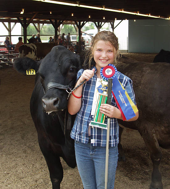 Young girl winning a competition with her cow Reserve Grand Champion Beef Steer with his proud owner farmer's market stock pictures, royalty-free photos & images