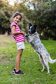 Young girl with a border collie on a field