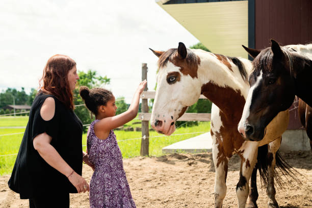 Young girl with autism connecting with horses in a special center. stock photo