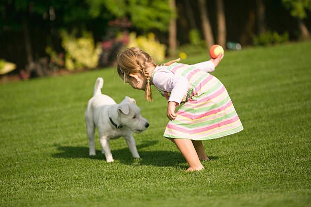 Young girl with dog playing in garden picture id529995281?b=1&k=6&m=529995281&s=612x612&w=0&h=3rk 9cdyca6xseugtpaurmu3ylxbddtpx1duzzwbyjc=