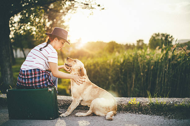 giovane ragazza con il suo cane nel tramonto - donna valigia solitudine foto e immagini stock