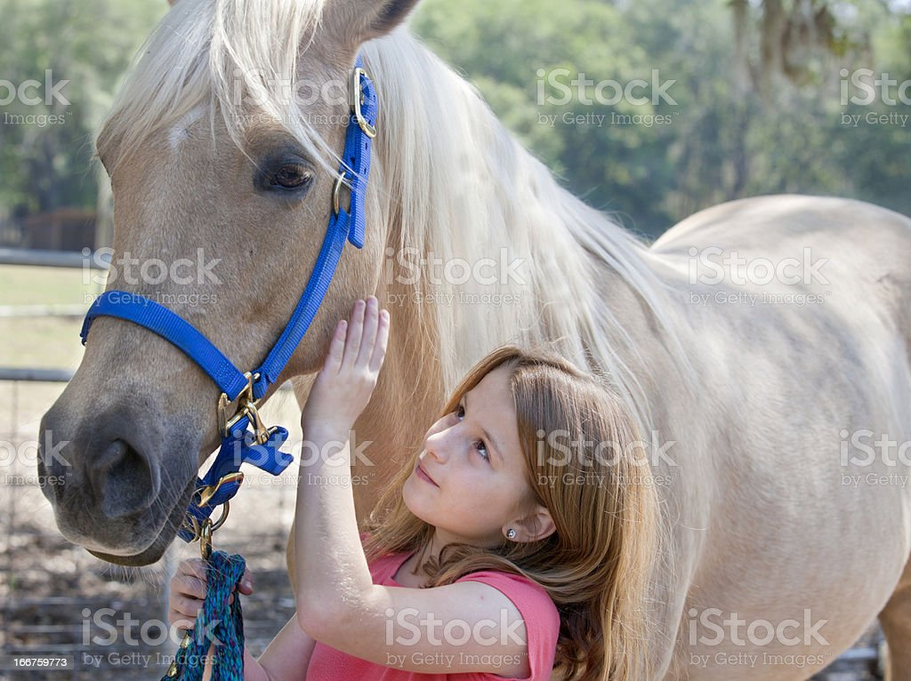 Young Girl with Horse royalty-free stock photo