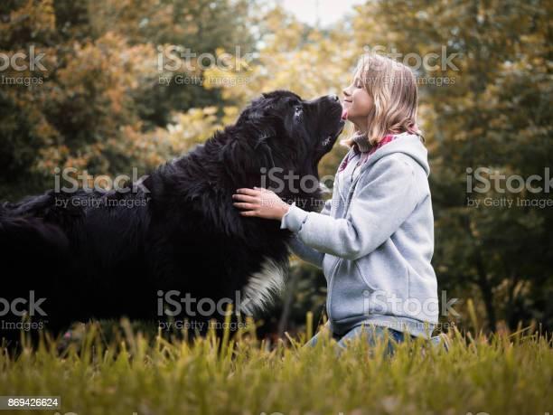 Young girl with huge dog breed newfoundland picture id869426624?b=1&k=6&m=869426624&s=612x612&h=zg7n2nfn8xqkmlozhv26kddvadfwpzpxguyckb9kyia=