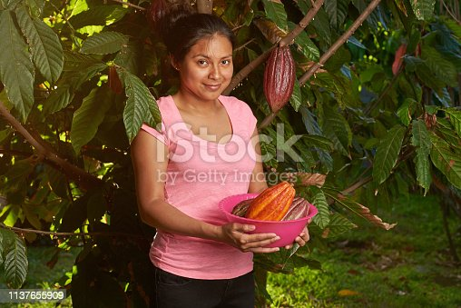 Young girl with pile of cacao pods on sunny farm background