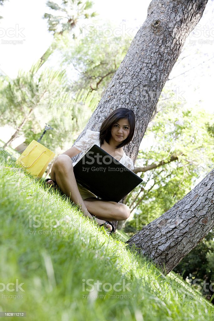 Young girl working with laptop on the grass royalty-free stock photo