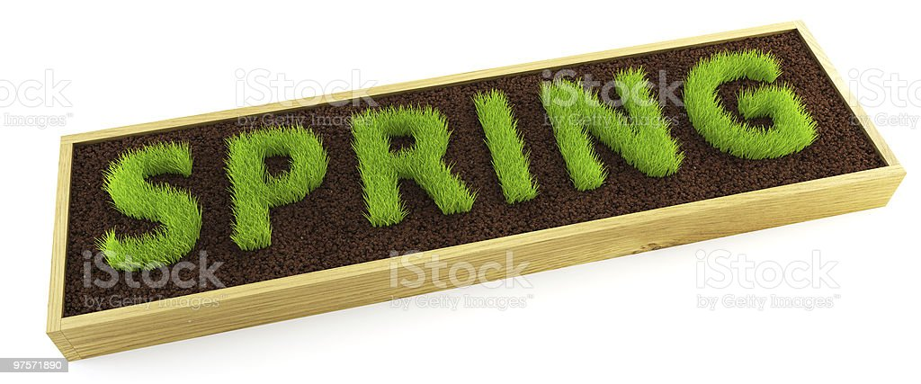 young grass word-shaped royalty-free stock photo