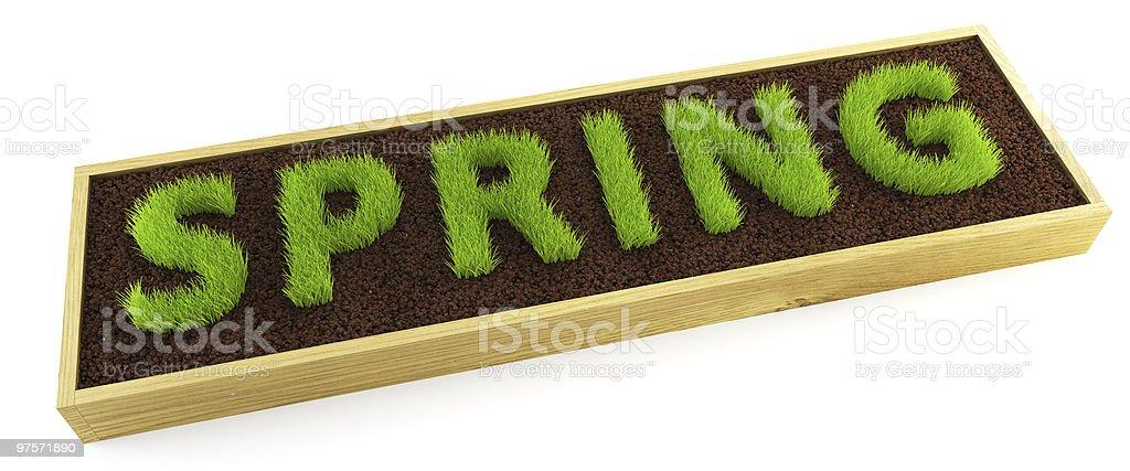 Jeune herbe mot en forme photo libre de droits