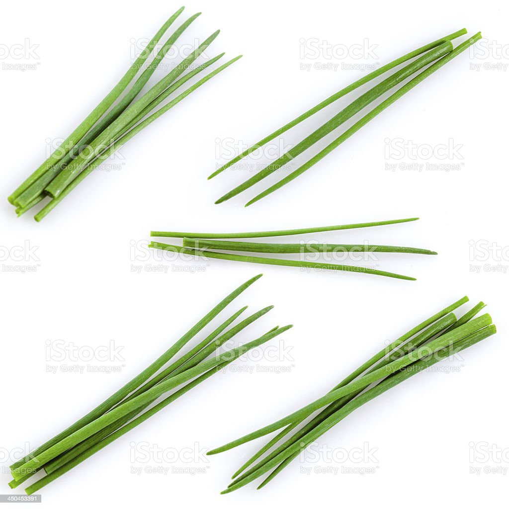 Young green onion set isolated on white stock photo