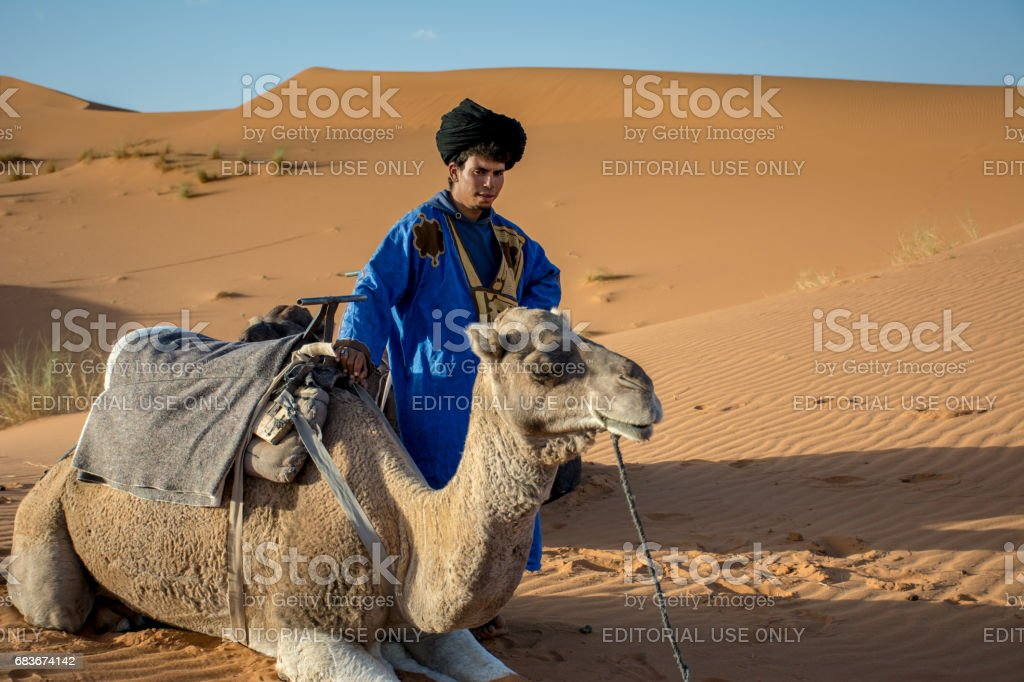 Young Guide With Our Camel Rides stock photo