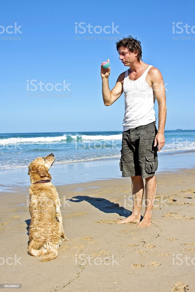 Young guy playing with his dog at the beach - Royalty-free Adult Stock Photo