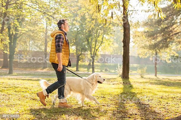 Young guy walking his dog in a park picture id497710232?b=1&k=6&m=497710232&s=612x612&h=v3uzuanv kjr98vcu3h39ctum1nvduwsylzugnghyqu=