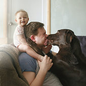 Family portrait of young handsome father with cute smiling little infant sitting on his shoulders and pet labrador retriever licking his face and hugging, side view
