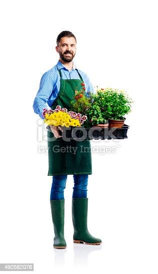istock Young handsome gardener 492582076