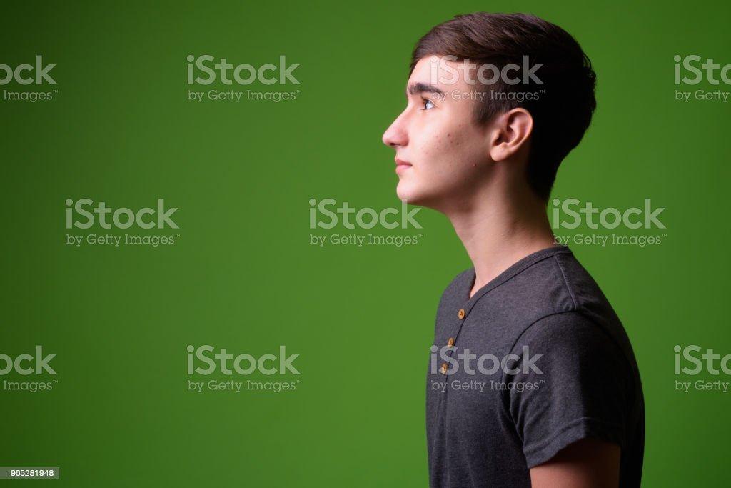 Young handsome Iranian teenage boy against green background zbiór zdjęć royalty-free