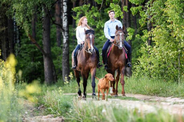 joven pareja feliz disfrutando de paseo a caballo en un bosque de verano. - equitación fotografías e imágenes de stock