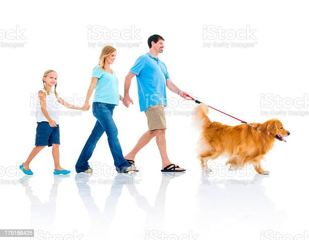 Young happy family holding hands in a line while walking dog picture id175186425?b=1&k=6&m=175186425&s=612x612&h=y5jrm7xtxo7mc5dukipnjlec5oax9tof2gcekwjjh40=