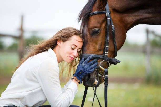 Young happy horsewoman with her bay stallion Young happy horsewoman in white shirt with her bay stallion sergionicr stock pictures, royalty-free photos & images