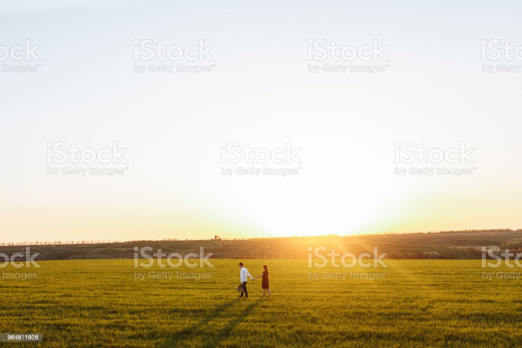 young, happy, loving couple, at sunset, standing in a green field, against the sky holding hands, and enjoying each other, advertising and inserting text royalty-free stock photo