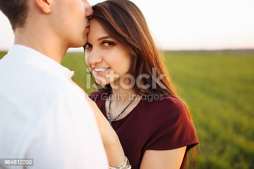 Young Happy Loving Couple At Sunset Standing In A Green Field Against The Sky In The Arms And Enjoying Each Other Advertising And Inserting Text Stock Photo & More Pictures of Adult