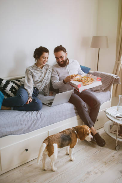 Young hipster couple home eating pizza with laptop and dog stock photo