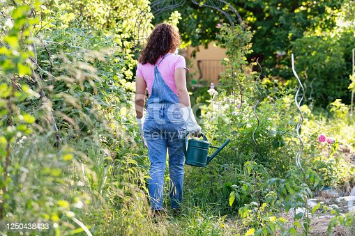 Young hispanic woman, 24 years old, wearing dungarees and a pink shirt, walking in garden with watering can, seen from behind