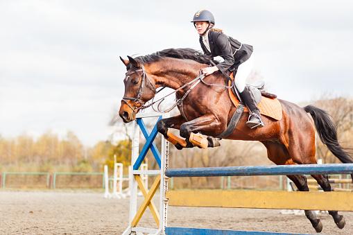 Young horseback sportsgirl jumping on show jumping