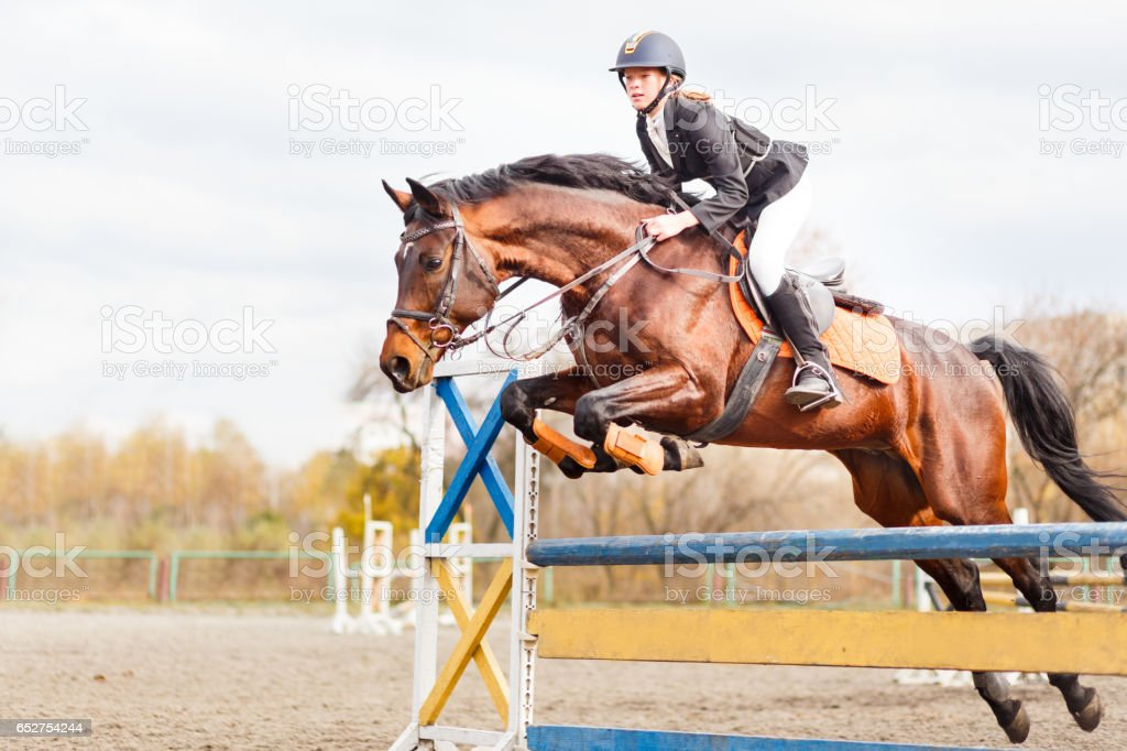 Young horseback sportsgirl jumping on show jumping stock photo