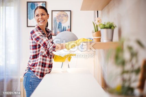 istock Young housewife makes house cleaning 1200917814