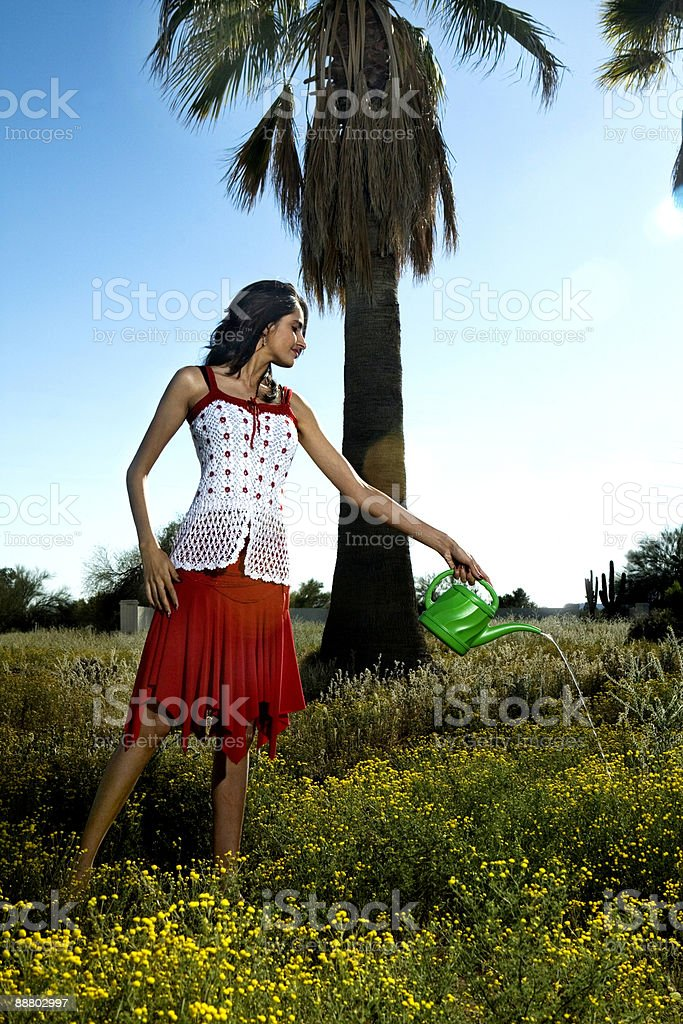 Young Indian female in field watering flowers royalty-free stock photo