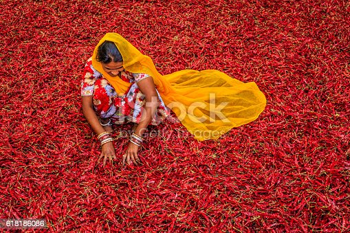 istock Young Indian woman sorting red chilli peppers, Jodhpur, India 618186086