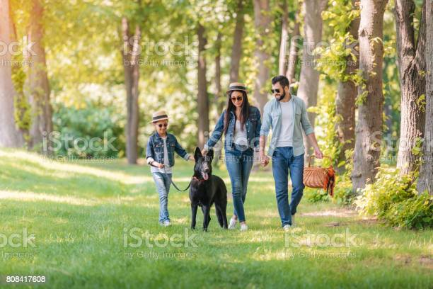 Young interracial family with dog holding hands and walking in sunny picture id808417608?b=1&k=6&m=808417608&s=612x612&h=yrktpefyff lo lonvsug8lftxvbyjtrsov y 6r5tm=