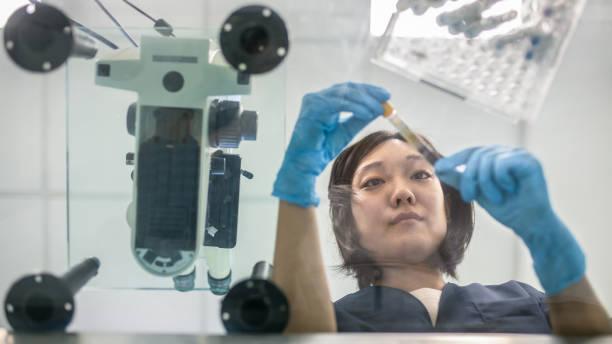 young japanese female lab tech examining blood sample - ematologia foto e immagini stock