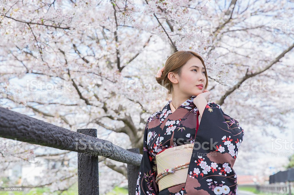 Young Japanese girl wears kimono waiting someone near cherry blossoms stock photo