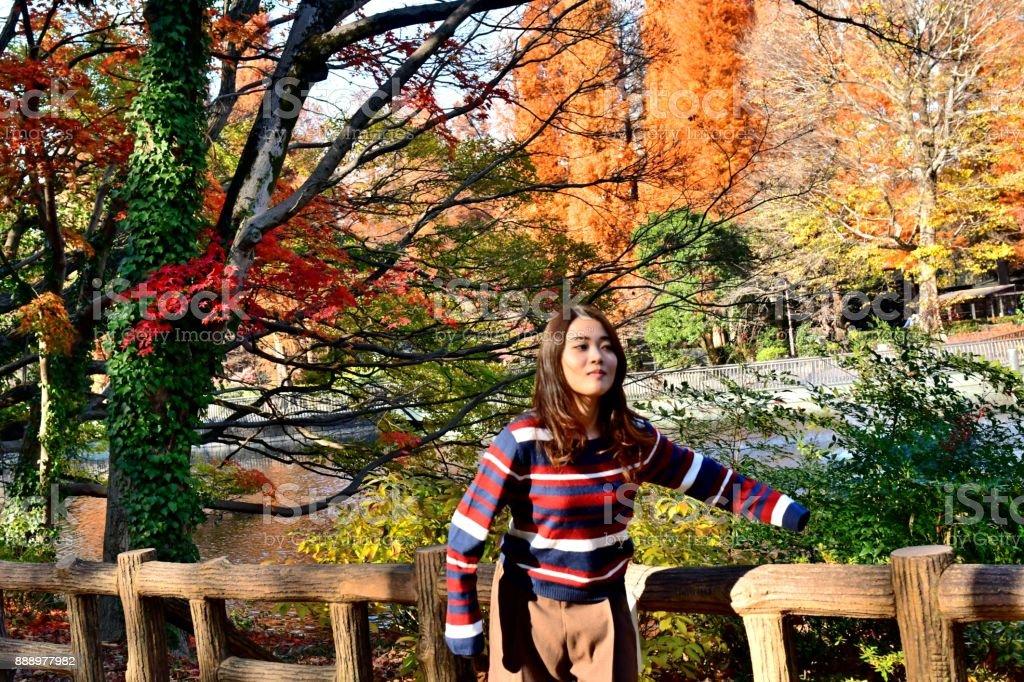 Young Japanese Woman Relaxing / Enjoying Autumn Colors in Inokashira Park stock photo