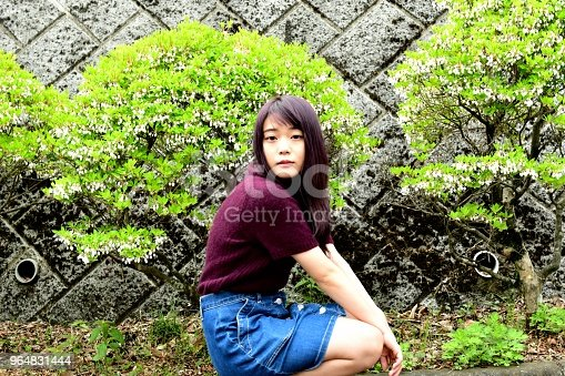Young Japanese Woman Sitting In Front Of Enkianthus Perulatus Stock Photo & More Pictures of Adult