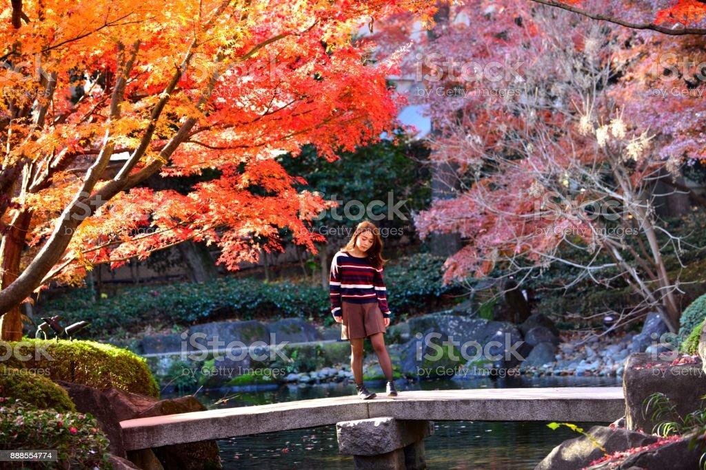 Young Japanese Woman Standing on Stone Bridge of Japanese Garden, Tokyo stock photo