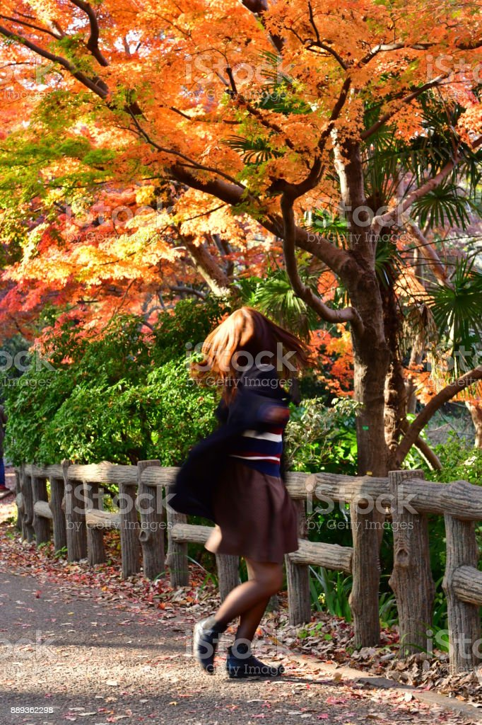 A young Japanese woman is swirling around under colorful maple trees...
