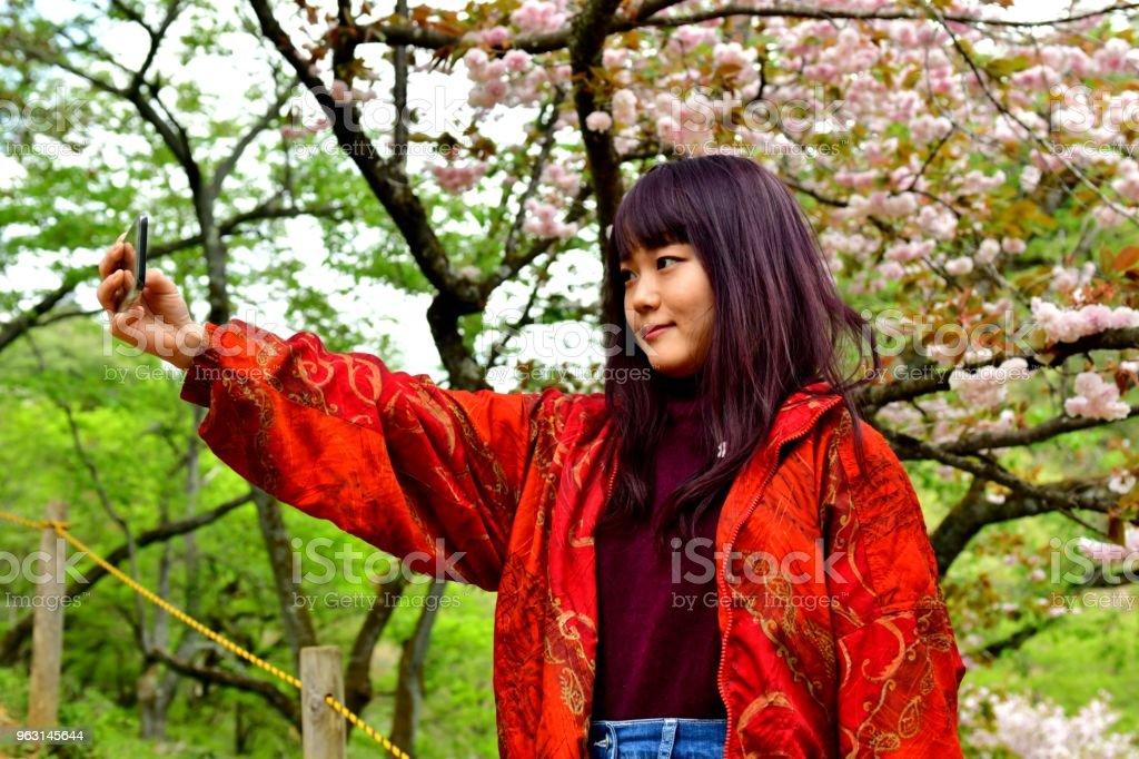 Ung japansk kvinna tar Selfie under dubbla kronblad Cherry Blossom - Royaltyfri 20-24 år Bildbanksbilder