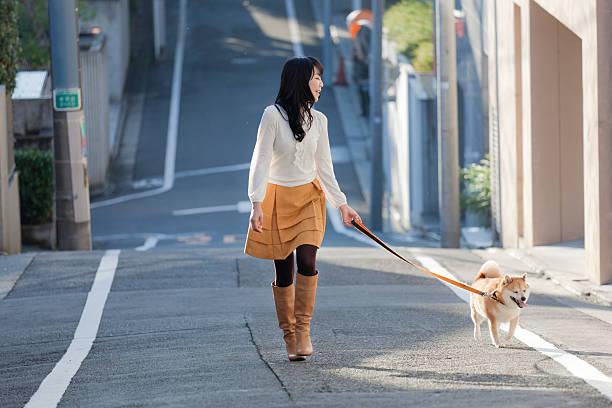 junge japanische frau walking angeleinte shiba hachiko statue hund auf der straße - hunde strumpfhosen stock-fotos und bilder