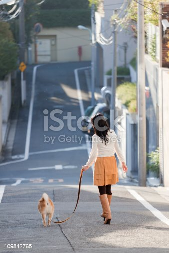 istock Young Japanese Woman Walking Shiba Inu Dog on Residential Street 109842765